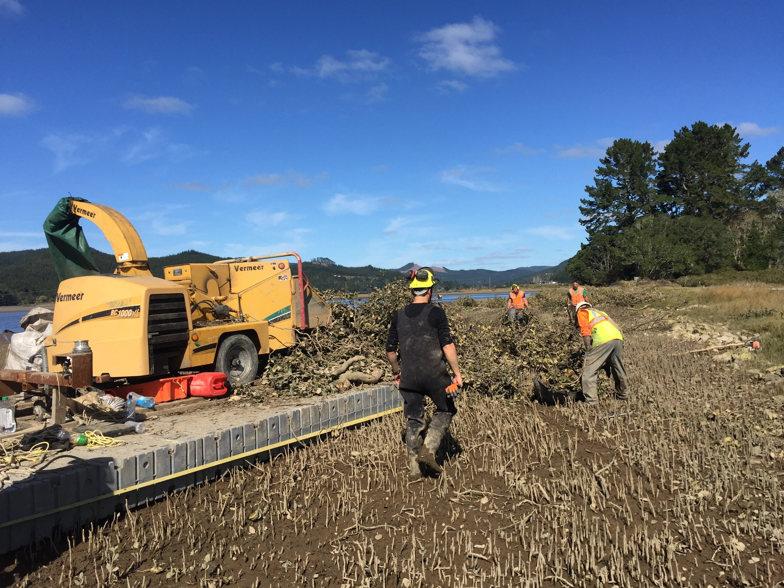Specialist Contractors work with chain in forest