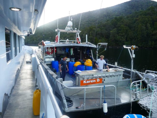 stable allow workboat Fiordland