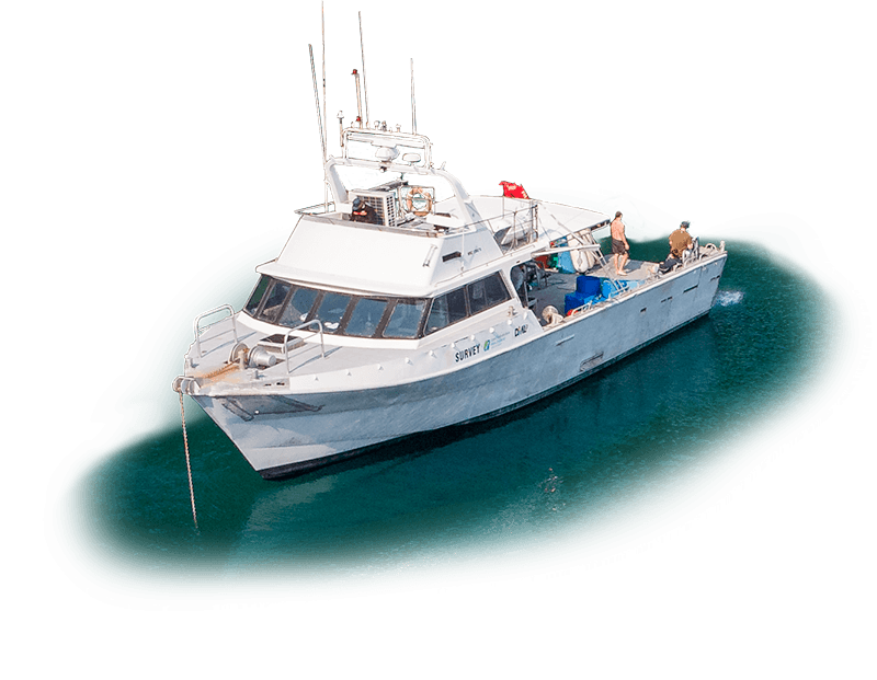Pacific7 Workboat to Hire New Zealand